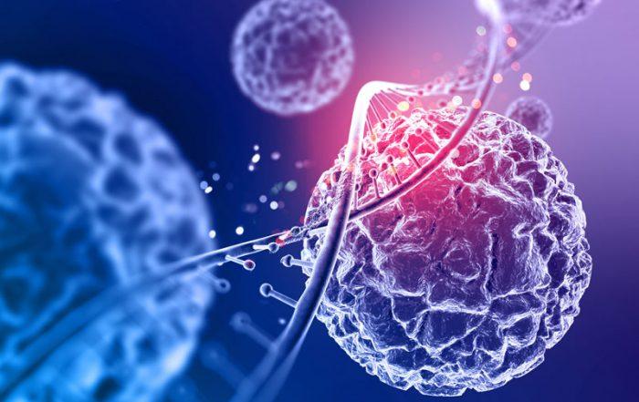 DNA fragements in molecules of cells